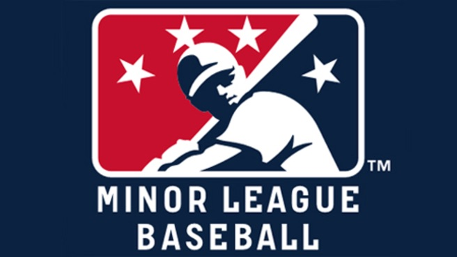 minor-league-baseball-logo-slide-05-26