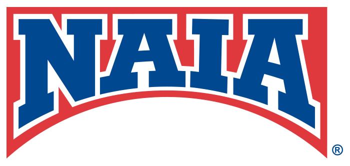 NAIA_Bridge_logo